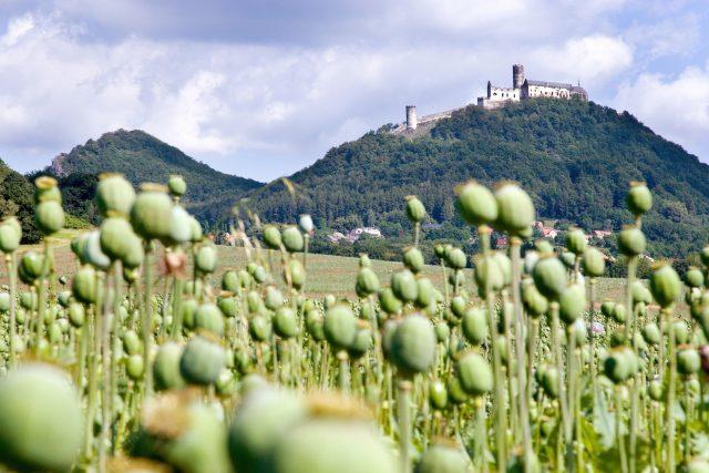 Královský hrad Bezděz | foto: Fotobanka Profimedia