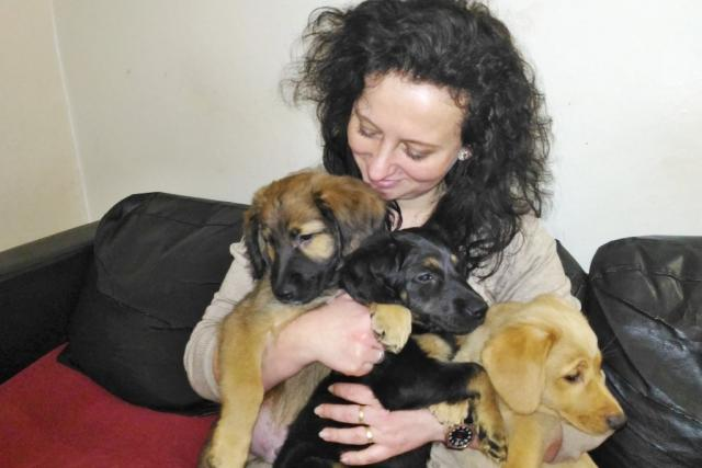 Petra Prokopová,  dočaskářka z Mnichova Hradiště za dva a půl roku pomohla dvaceti psům   foto: Lucie Fürstová,  Český rozhlas