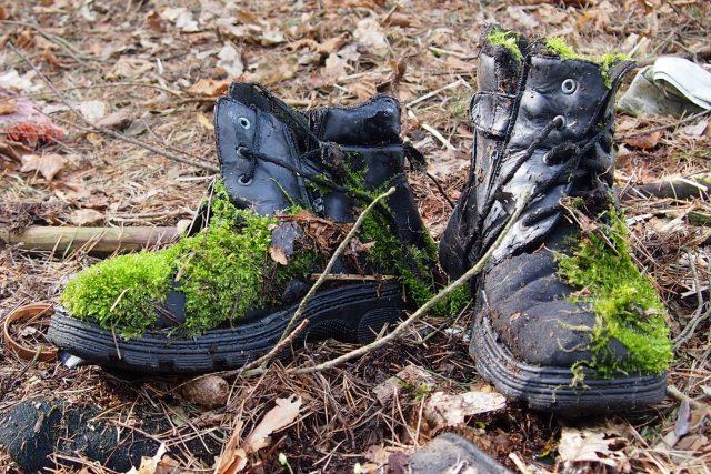 Oblečení a boty se objevují při úklidech často, tyto boty už si příroda vzala za své