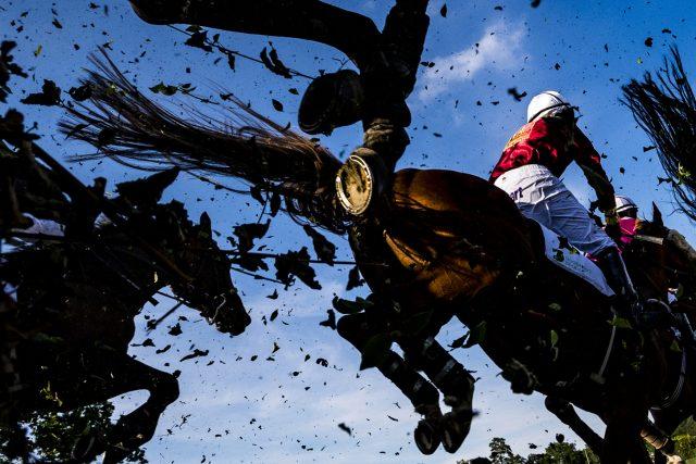 Koně s žokeji překonávají při dostihovém mítinku v Pardubicích  (červen 2019). Snímek je součástí sbírky fotografií,  se kterými Roman Vondrouš zvítězil v kategorii Fotografický soubor na kongresu Mezinárodní asociace sportovních novinářů v Budapešti   foto: Roman Vondrouš,  ČTK