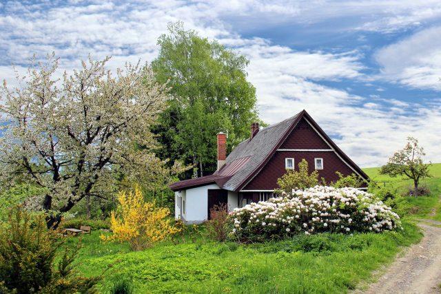 Zahrada je radost a potěšení,  ale také práce a zkušenosti  (ilustrační foto) | foto: Fotobanka Pixabay