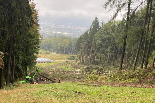 V lyžařském areálu na Ještědu začalo kácení stromů | foto: Jana Pšeničková