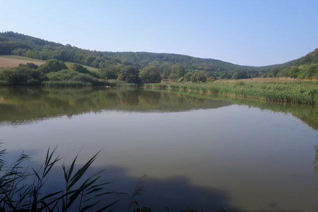 Pohledy na Kalivodské bučiny a rybníky jsou úchvatné