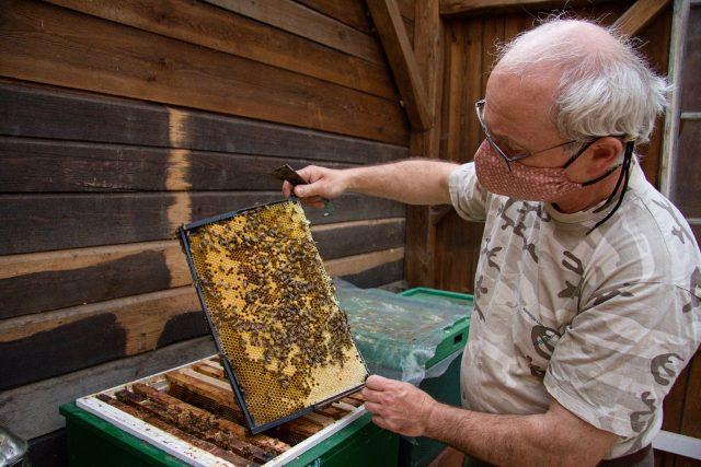 Včelař Tomáš Moravec